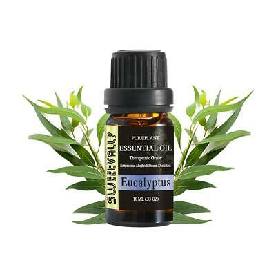 Eucalyptus Essential Oils 100 Natural Pure Aromatherapy Humidifier Therapeutic