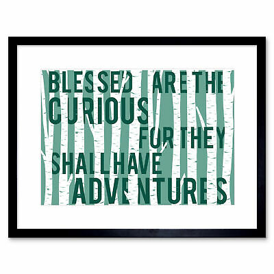 Blessed Curious Adventure Birches Framed Wall Art Print 12x16 Inch