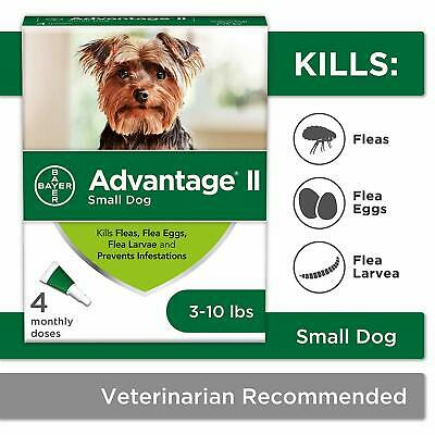 Bayer Advantage® II Small Dog 4 Monthly Doses