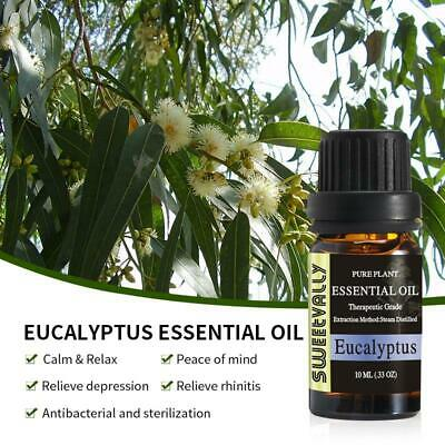 Eucalyptus Essential Oils Natural Pure Aromatherapy Humidifier Candle Soap Bath