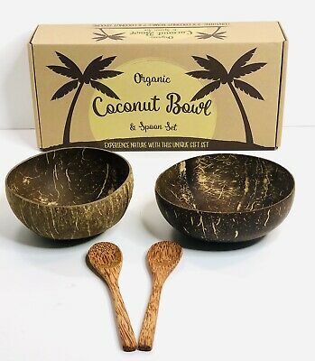 Vegan Organic Salad Smoothie Buddha Bowl for Kitchen Set 4 Coconut Bowls And Wooden Spoon Set Dining and Decoration