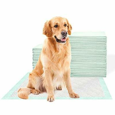 MiaoPei Pet Training Pee Pads - Extra Large (Heavy Duty X-Large|50 pack)