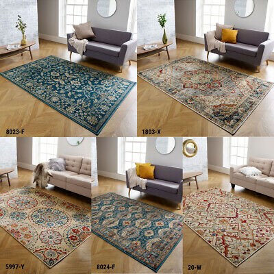 Small Extra Large Vintage Traditional Valeria Rug Living Room Faded Rug Low Cost