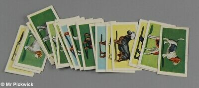 Mills Filtertips Cigarette Cards Dogs Series of 25