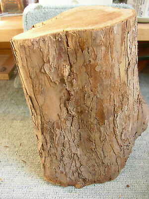 "Yew wood log Blank Turning Carving Crafts Approx 5.4-5.5"" x 9"" 3 kg Felled 2012"