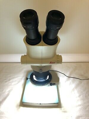 Leica S6 Stereozoom Microscope W/ LED Light & WF 10x/22 Lens