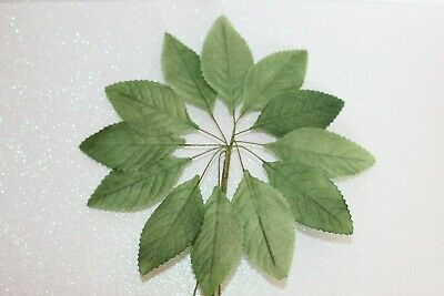 36 Green Rose Leaves Perfect For Buttonholes, Floral & Arts & Crafts ETC