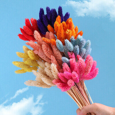 20Pcs Dried Flowers Bunch Wedding Garden Home Decor Craft Gifts Natural Dry