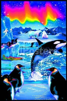 "Arctic Aurora  Blacklight Poster - 23""X35"" Flocked"