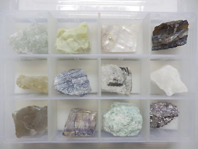 12 Mineral Stone Collection Set in Plastic Box MSS12-8 Education Specimen Kit