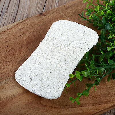 10pcs Side Kitchen Cleaning Dish Washing Scouring Pad Sponge Scrubber HJ56