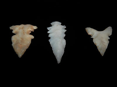Pre-Columbian Arrowhead Collection Set of 3, Excellent Condition, Eccentric