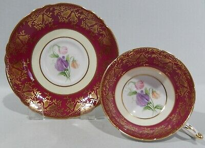 PARAGON SWEET PEA Floral CUP & SAUCER Maroon Band & Gold Filigree c1957-60 MINT