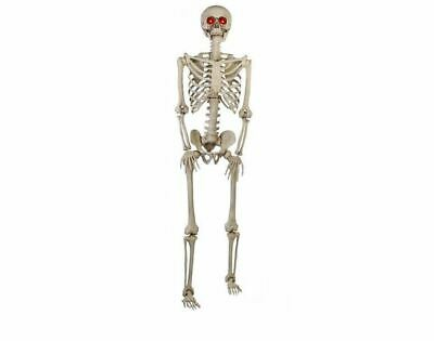 LIFE SIZE 5 ft Halloween Skeleton Animated LED Lit Eyes Hanging Prop Decor House
