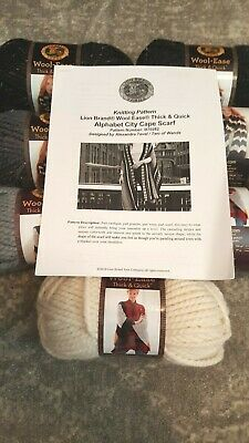 Lion Brand Alphabet City Cape/Wrap Knit kit (wool ease thick and quick yarn)