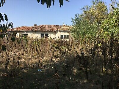 Bulgarian Company and House in Village Sirakovo Dobrich low start Price 1499,99