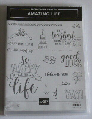 Stampin Up Photopolymer Clear Stamp Set - Amazing Life - Damaged Case.