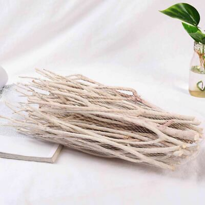 White Craft and Decor Twigs - Natural Wood Branch Painted Vintage Wedding Decor