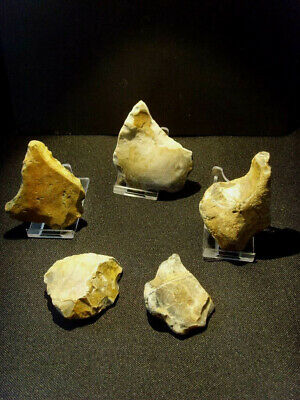Lower Paleolithic - Acheulean handaxe, point and scrapers - UK C.450,000+ BP