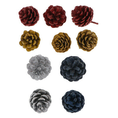 10x Big Natural Colored Pine Cones In Bulk Dried Flowers For Christmas Decor