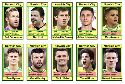 NORWICH CITY FC >> Players & Manager Trading Cards for 2019/20 Season