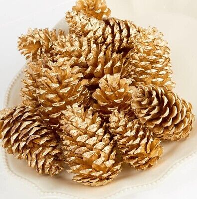 Gold Painted Pine Cones