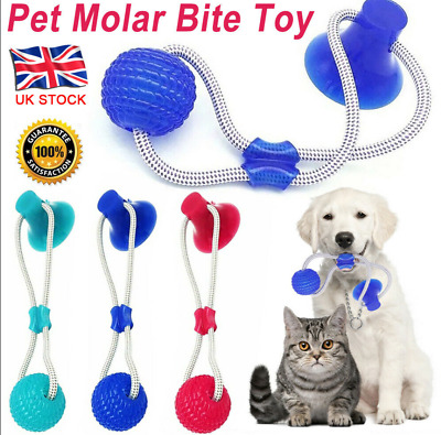 Multifunction Pet Molar Bite Toy Interactive Fun Pets Toy with Suction Cup Dog