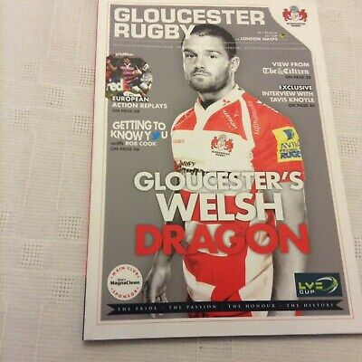 Rugby Union LV Cup Gloucester v Wasps 1st February 2014