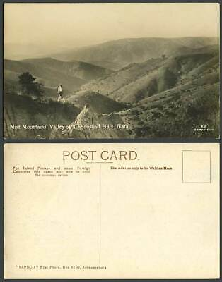 South Africa Mist Mountains Valley of a Thousand Hills NATAL Dog Old RP Postcard