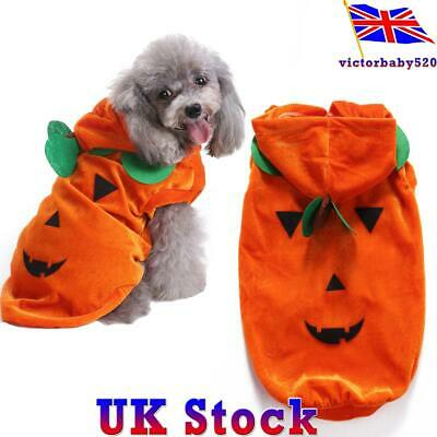 UK Pet Dog Clothes Funny Party Dress Halloween Holiday Draping Pumpkin Costume
