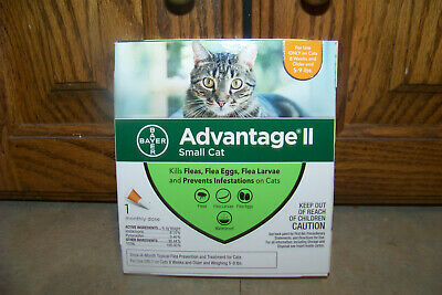 BAYER Advantage II Small Cat (5-9 lbs.) - One Monthly Dose