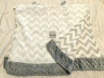 ITZY RITZY Car Seat Canopy & Tummy Time Mat