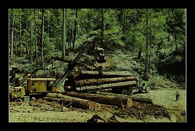 Us Postcard Redwood Logs Union Lumber Company Fort Bragg California