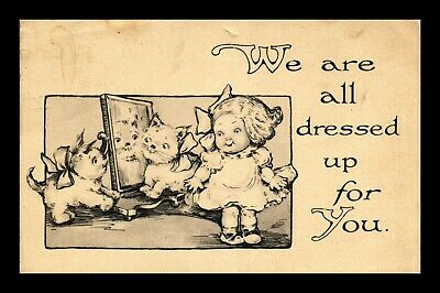 Us Postcard All Dressed Up For You Humorous Girl And Kittens