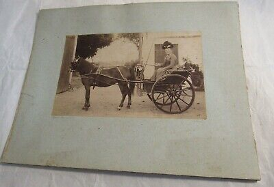 1800s Lot 2 Antique French Horse Drawn Carriage Cabinet Photographs Old Views