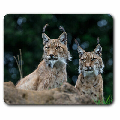 Wild Lynx in Snow Computer Mouse Mat Christmas Gift Idea AT-55M