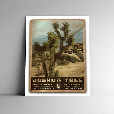"Art National Park Joshua Tree Rare Hot New 12x18/"" TR61"