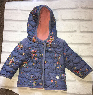Next Girls Blue Floral Quilted Coat 3-6 Months