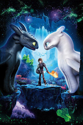 HOW TO TRAIN YOUR DRAGON V3 LAMINATED ART POSTER 24x36in (61x91cm)