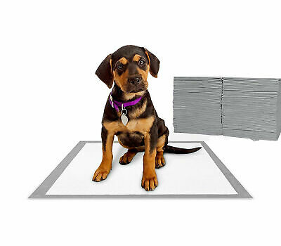 Absorbent Training Pads for Puppies Pets,No Leaking,Odor Control,Ashy Charcoal