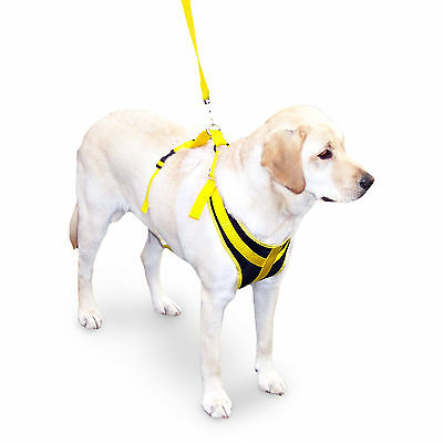 Pre-Owned Safety Seat Belt Harness for Dogs, Safe Vehicle Travel for Pets