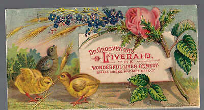 Dr. Grosvenor's LIVERAID-Wonderful Liver Remedy[in small doses] Quack Medicine