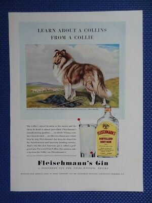 """Vintage 1940 FLEISCHMANN DRY GIN Colorful Ad with Collie Dog - 9"""" X 12"""""""