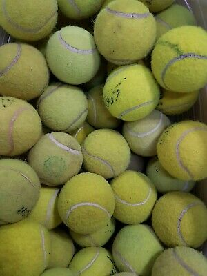 30 Used Used Tennis Balls For Dogs... Branded Balls At A Very Low Price !
