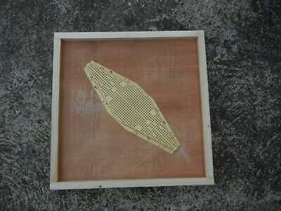 1 Langstroth bee hive clearing board