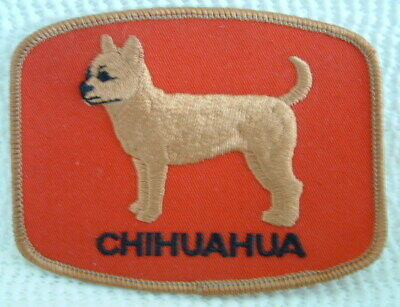 Chihuahua Dog Vintage Embroidered Sew On Badge / Patch