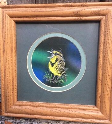 Meadowlark Baby Bird Scratchboard Art Print By Sharon Wald Framed & Matted
