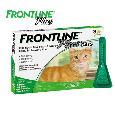 FRONTLINE Plus for Cats and Kittens (1.5 lbs and over) Flea and Tick Treatment