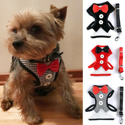 1X Adjustable Breathable Mesh Small Dog Cat Pet Harness Leash Collars Puppy Vest