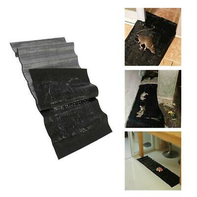 Mouse Traps Sticky Super Board Trap For Rats Rodents Cockroaches Bugs Ants Y2